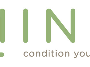 mint_logo_2014_final