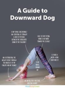 yoga alignment workshop series downward facing dog adho