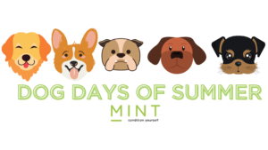 July 15 to Aug 31 2021: DOG DAYS OF SUMMER – Buddy guests visits are free